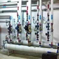 Bakteria Legionella w instalacjach dystrybucji wody